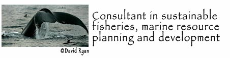 consultant-charter_01