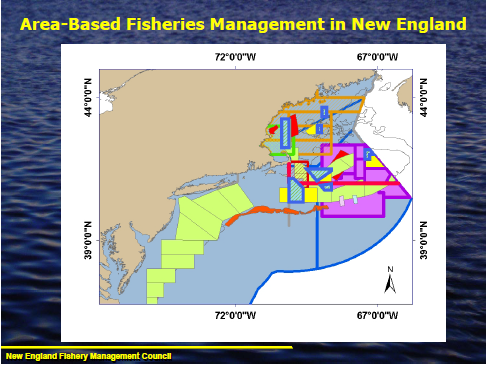 Area-based fishery management